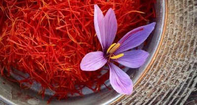 The Afghan Saffron has been recognized as one of the best saffron in the world